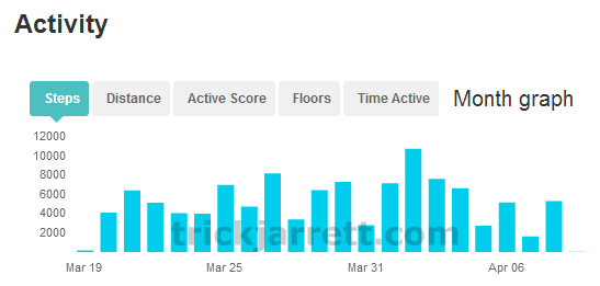My Fitbit Activity
